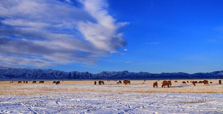 【大美中国】:黄山雪景 1月13日,安徽黄山风景区迎来了新年首场大范围
