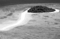 3座海外岛屿在淘宝1元起拍