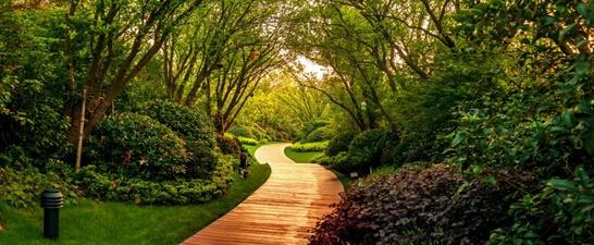 龙湖经典五重园林,夏日风情最是浪漫