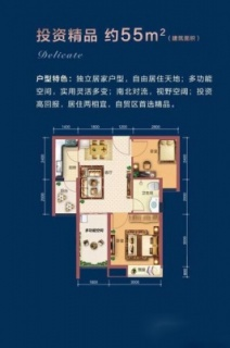 55平两房户型图