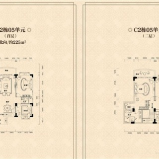C2栋05单元户型图