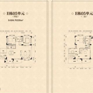 E栋05单元户型图