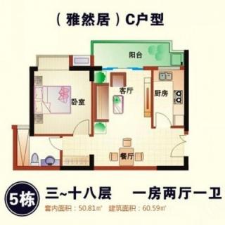 5#楼C户型
