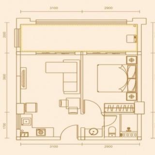55.10平米一房两厅一卫