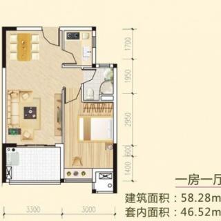 多层一房一厅户型2