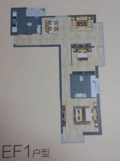 EF1户型图两室两厅107平