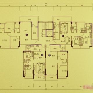 公寓S13-La'(217栋)户型