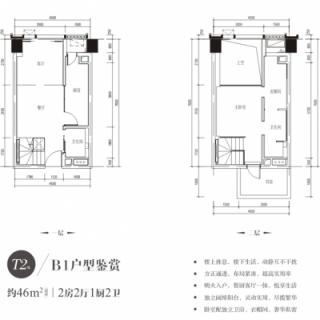 T2栋B1户型图