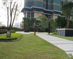 绿景红树湾壹号实景图3