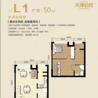 50㎡公寓L1户型