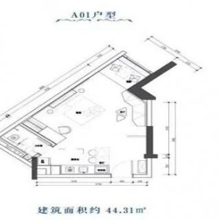A01户型图