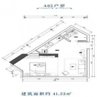 A05户型图