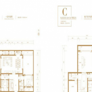 别墅C户型