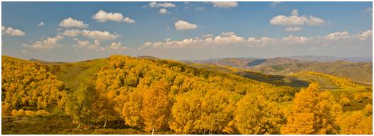 翠云山森林度假景区是一个春来踏青赏花,夏至避暑度假,秋赏漫山红叶