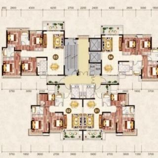 3栋2梯楼层平面图