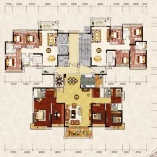 1栋2梯楼层平面图