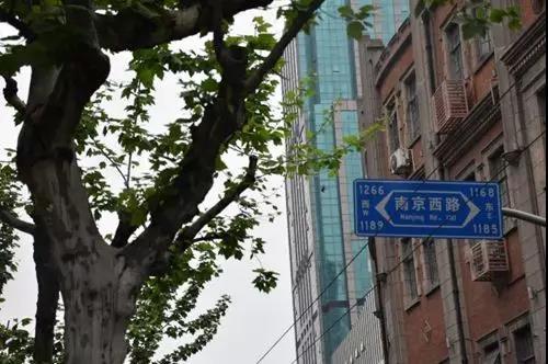 南京西路 凤凰网奇点商业实拍